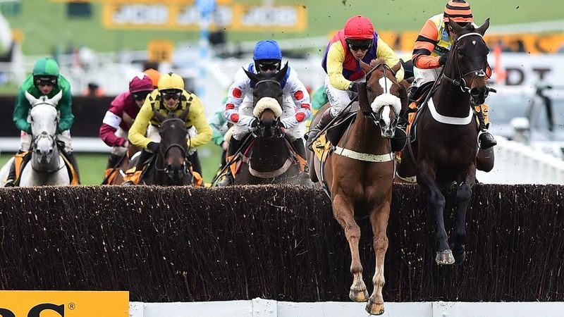 punchestown gold cup betting odds