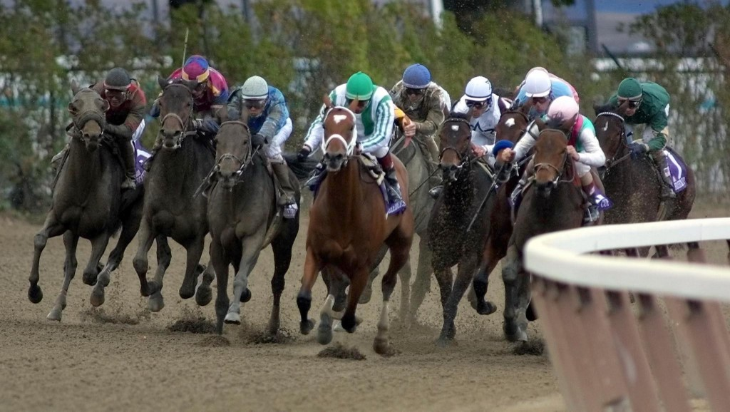 Woodbine and Canterbury Thursday Horse Racing Picks and Predictions