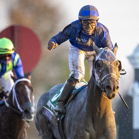 Can Essential Quality Win the Triple Crown?