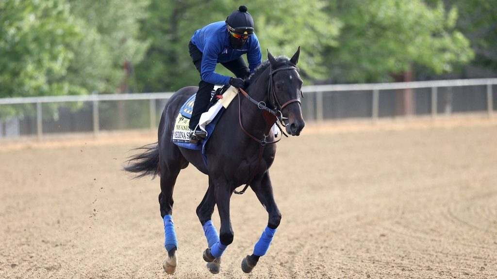 Preakness Stakes Top Picks and Longshots: Free Horse Racing Analysis and Pick