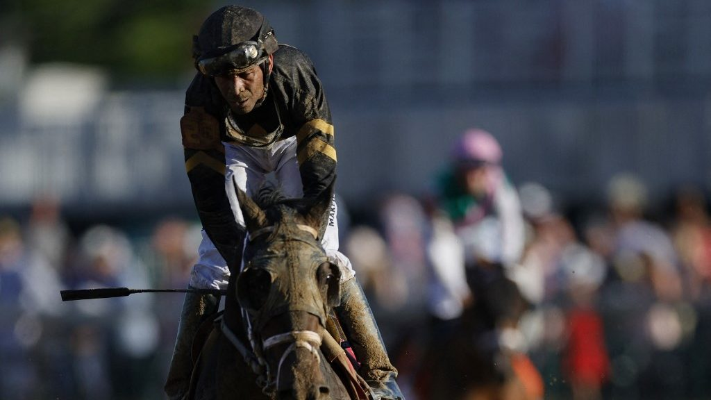 Belmont Stakes Top Picks and Longshots: Free Horse Racing Analysis and Pick