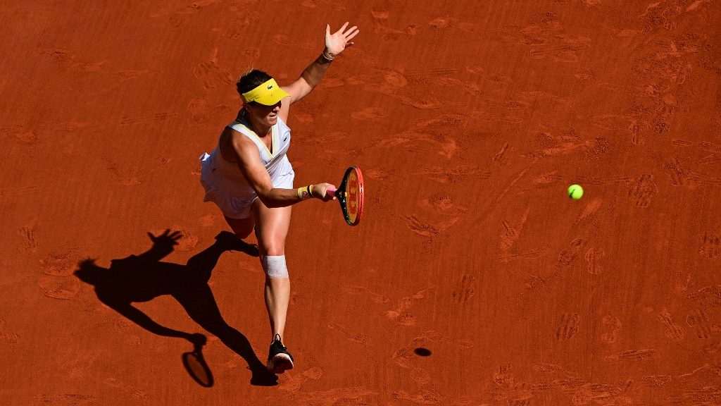 ATP and WTA French Open Day 12 Top Tennis Picks and Predictions
