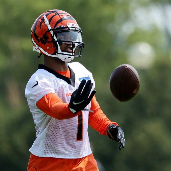 Bengals vs. Buccaneers NFL Preseason Week 1 Expert Picks and Odds Preview